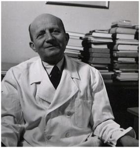 CV u. Bild Prof. Hugo Wilhelm Knipping